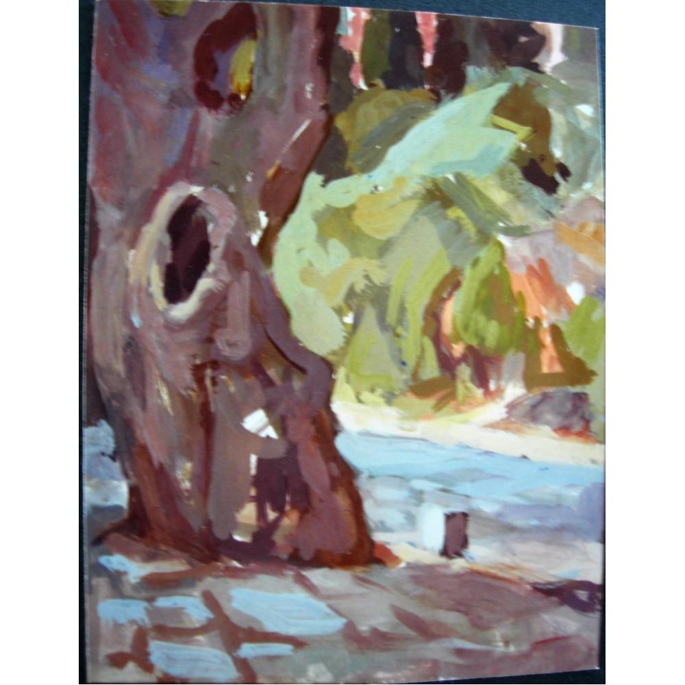 Δελφοί, δένδρο στην στροφή προς Κασταλία πηγή, 1989