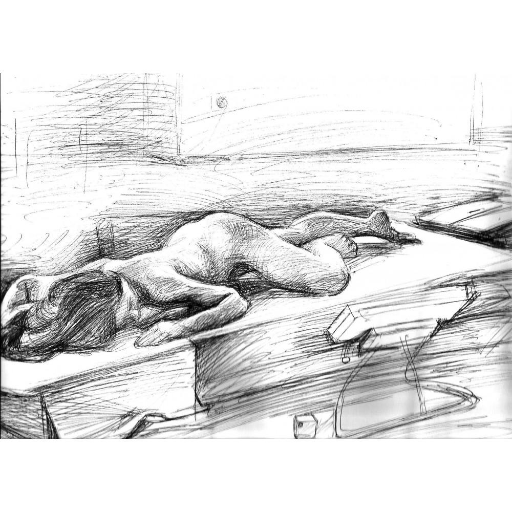 Γυμνό στην Ακαδημία με στυλό, 1994